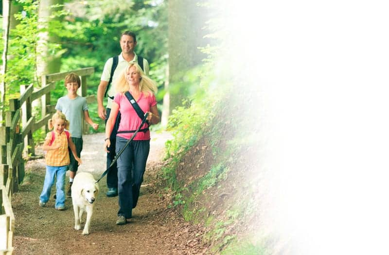 family hiking in the Smoky Mountains with their dog